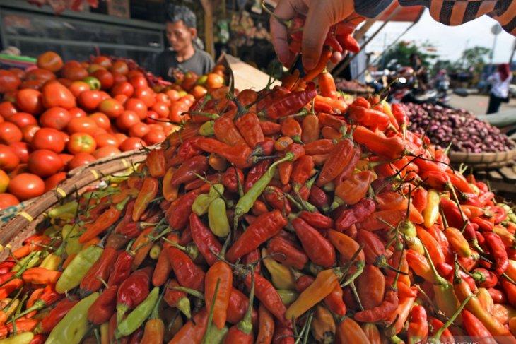 Flood causes chili price to soar