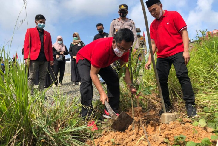 Peringati HUT ke-48 PDIP Balangan targetkan tanam seribu pohon