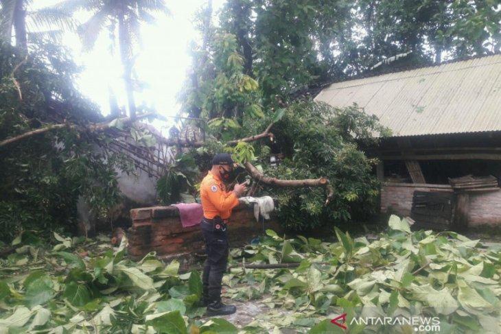 Belasan rumah dan lapak Pasar Ambulu Jember rusak akibat angin puting beliung