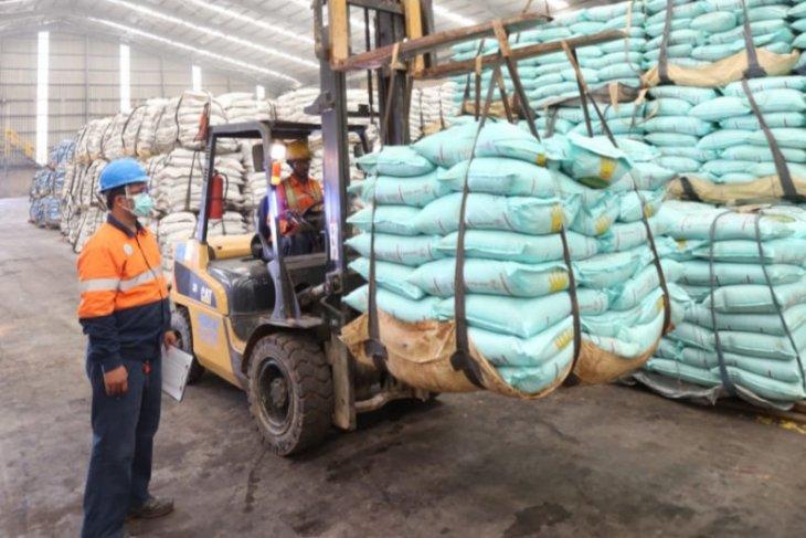 Produsen pupuk memberi pendampingan ke petani sawit antisipasi La Nina