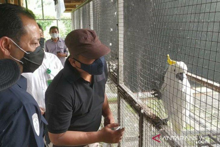 Ratusan burung dilindungi disita dari penangkar ilegal di Sukabumi