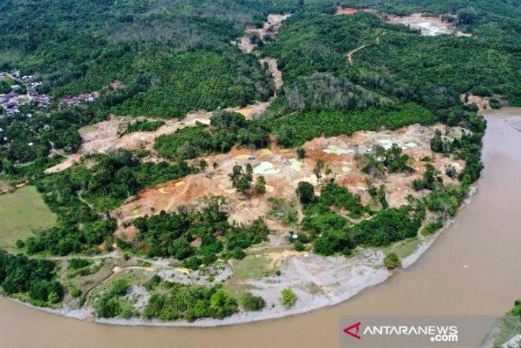 Walhi: Kerusakan hutan di Aceh Barat akibat tambang ilegal kian parah