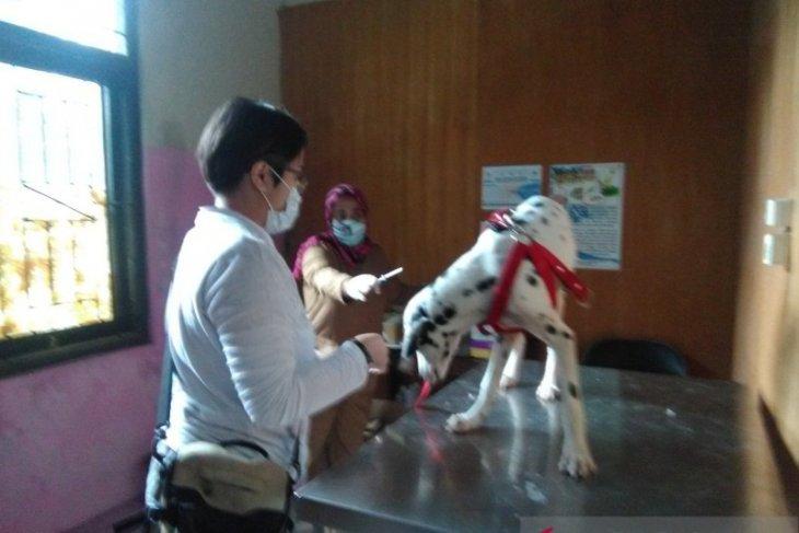Puskeswan ajak warga manfaatkan Call Center 0877-7335-7422 untuk dapatkan pelayanan dokter hewan