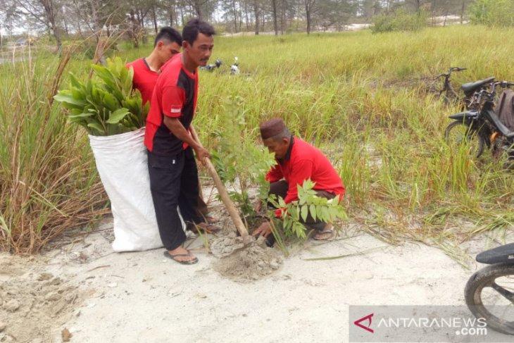 PDIP Bangka tanam ratusan pohon guna penghijauan