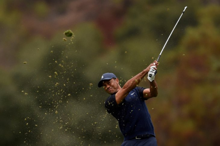 Tiger Woods absen dua turnamen usai operasi punggung
