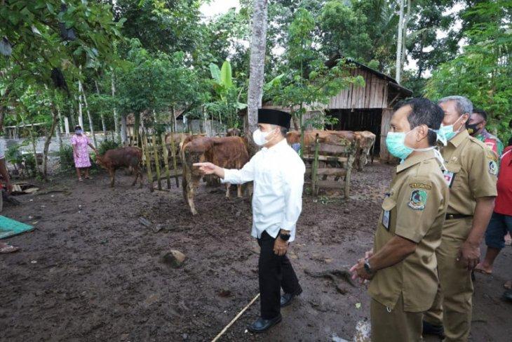 Lewat e-Nak Wangi, Pemkab Banyuwangi optimalkan perekaman kesehatan ternak sapi