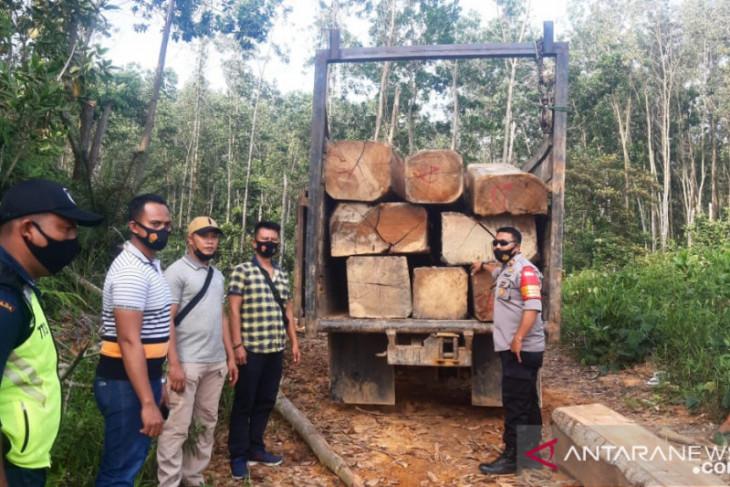 Truk sarat muatan kayu ilegal terciduk satpam saat patroli tengah malam