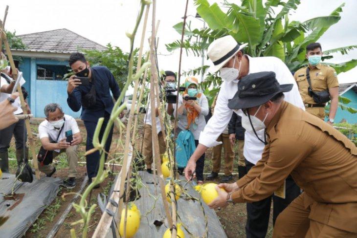 Banten pastikan ketersediaan cadangan beras hingga layanan antar kebutuhan pokok