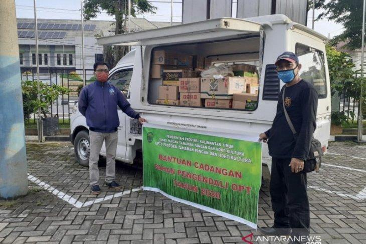 DPTPH Kaltim salurkan bantuan pemberantasan hama tanaman pangan