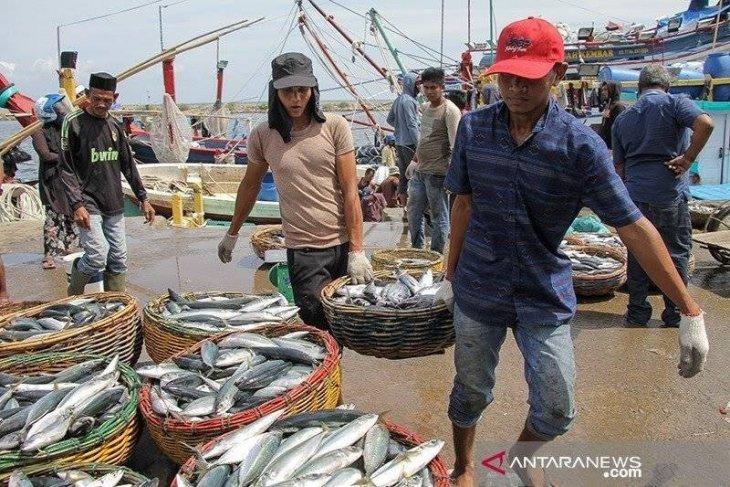 Tangkapan ikan menurun akibat cuaca buruk di perairan Flores
