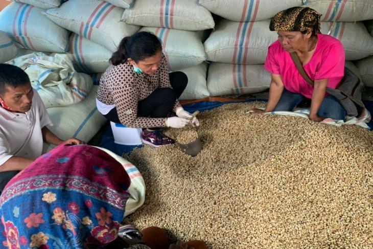 AEKI sebut  harga kopi dalam negeri bertahan stabil
