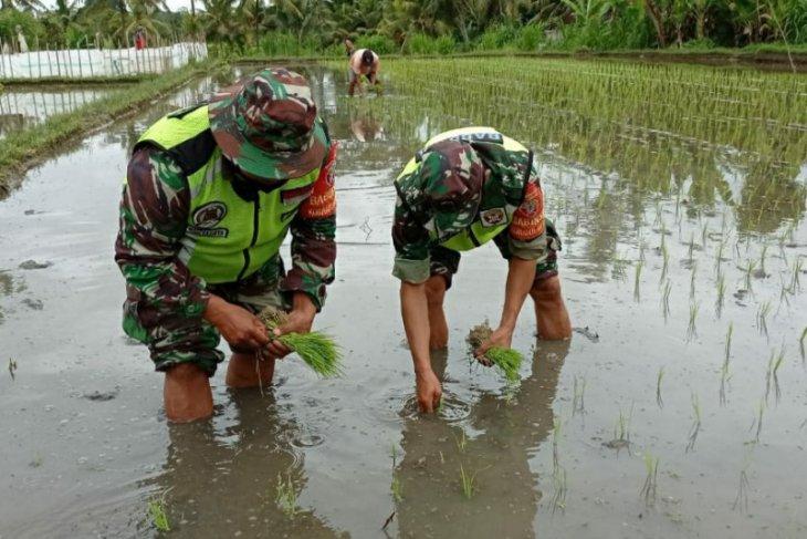 Kodam Udayana dorong ketahanan pangan saat pandemi di wilayah Bali-Nusra