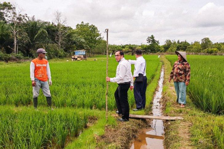 Bank Kalsel siapkan konsultan pertanian dukung inovasi petani