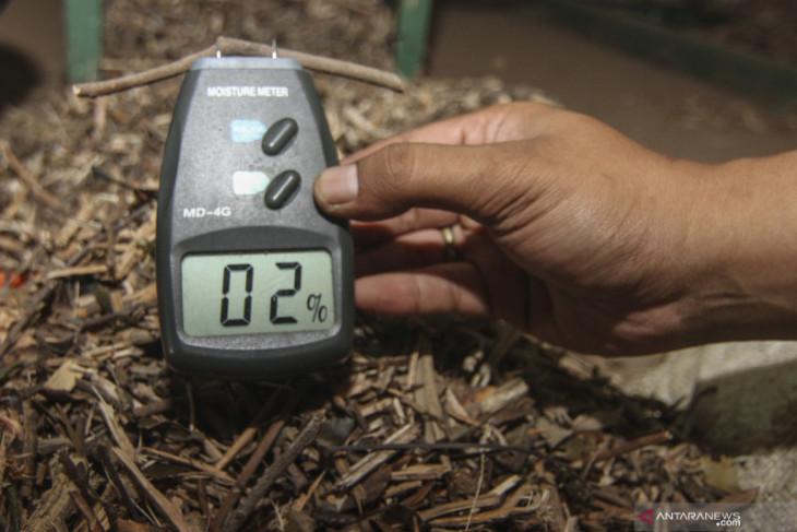 Indonesia gandeng perusahaan Jepang gali potensi biomassa kayu