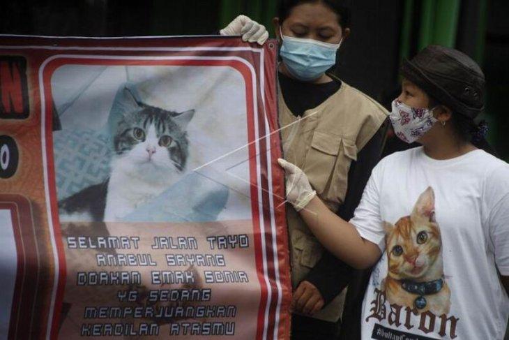 Aksi protes kasus penyembelihan kucing