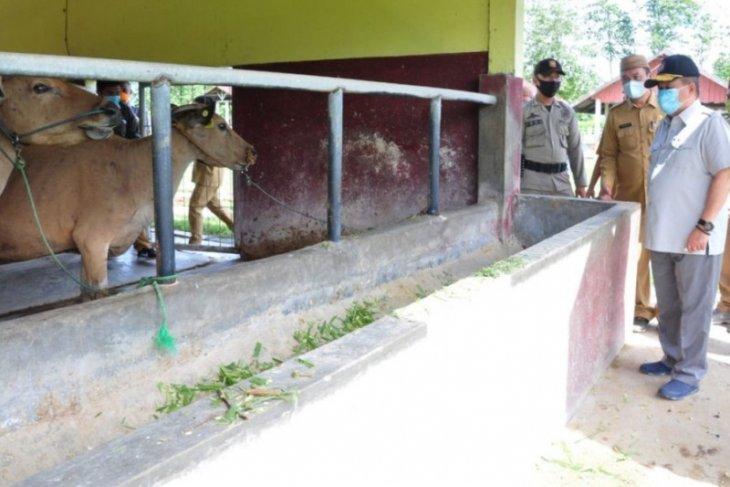 Pemprov Gorontalo kembangkan sarpras di Balai Perbibitan Ternak