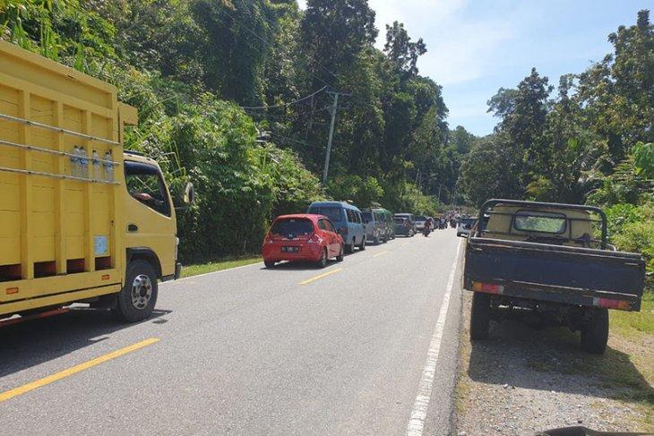 Lalu lintas di Aceh Selatan terganggu akibat pohon tumbang