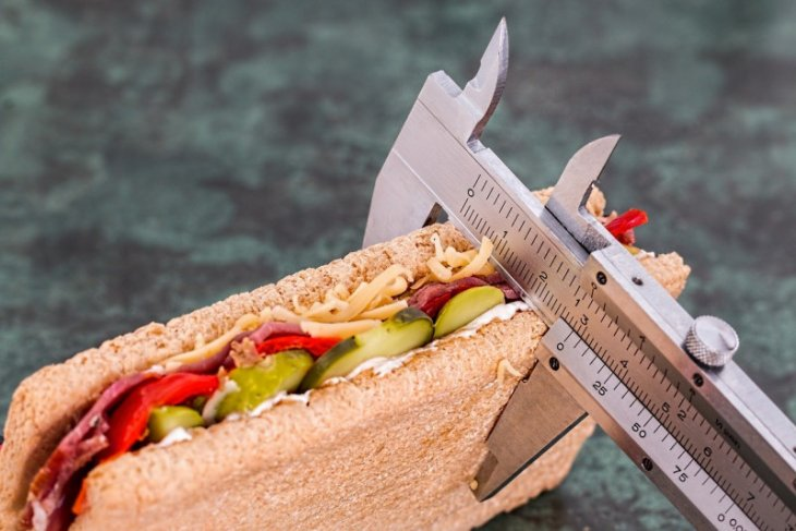 Cegah obesitas sambil waspadai mitos  berdiet