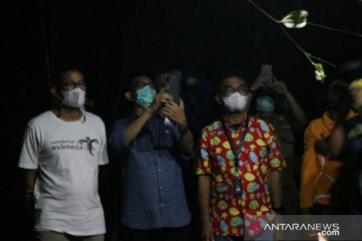 Menteri Sandiaga Uno kunjungi Bukit Peramun saksikan hewan tarsius