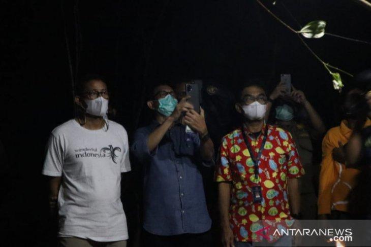 Menteri Sandiaga Uno berharap kelestarian tarsius di Belitung terjaga