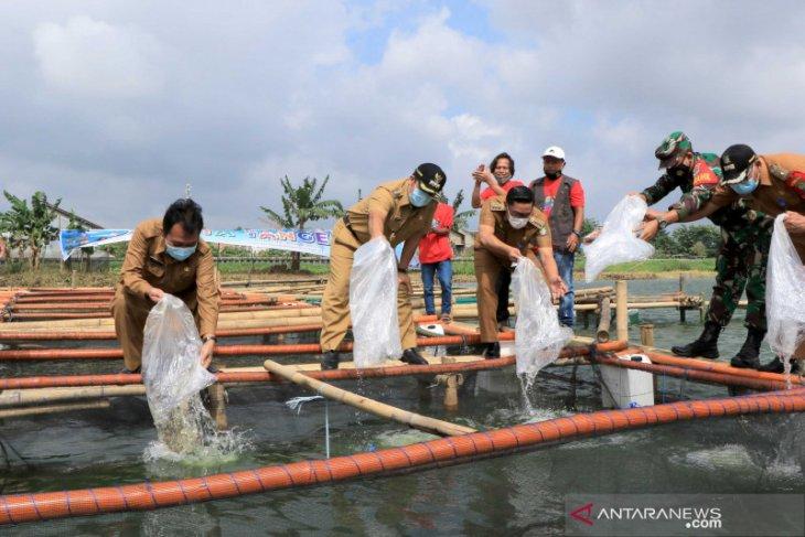 DKP berikan 7.000 benih ikan ke 14 Kelompok Wanita Tani se-Kota Tangerang