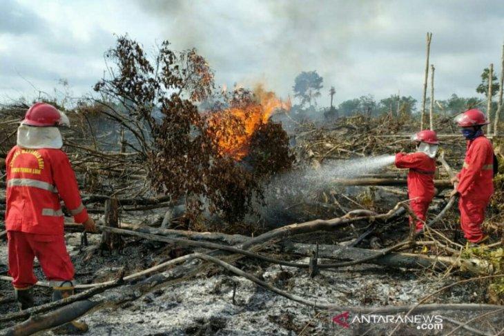 Lahan gambut di Musi Banyuasin terbakar, tim gabungan berjibaku 24 jam