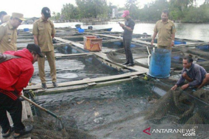 Bupati Belitung tawarkan peluang investasi sektor perikanan