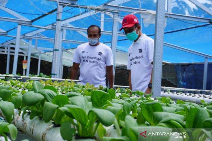 PLN UID Bali dukung modernisasi pertanian dengan