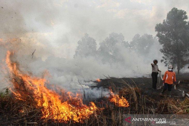 Datang tiap tahun, Pekanbaru antisipasi  kebakaran hutan