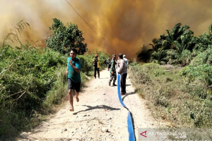 Polda Kalbar : Belum ada perusahaan yang sengaja bakar lahan