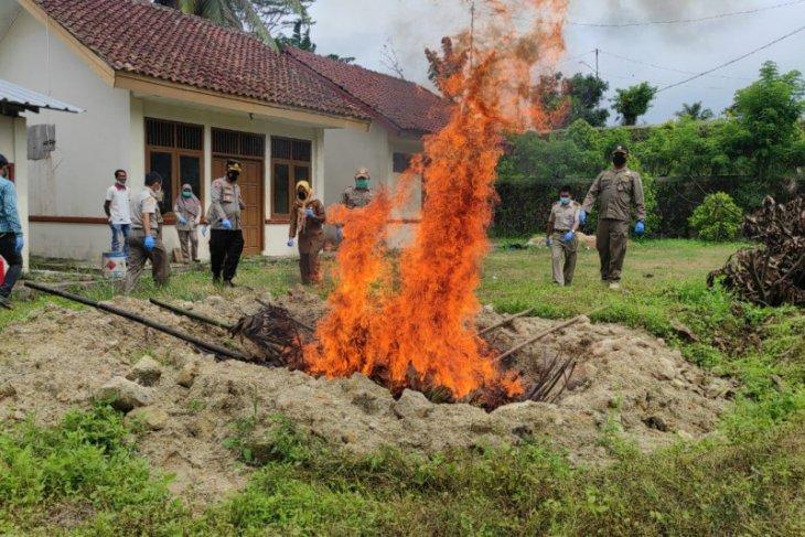 700 kilogram daging celeng ilegal dimusnahkan, disita dari peredaran tanpa standar kesehatan