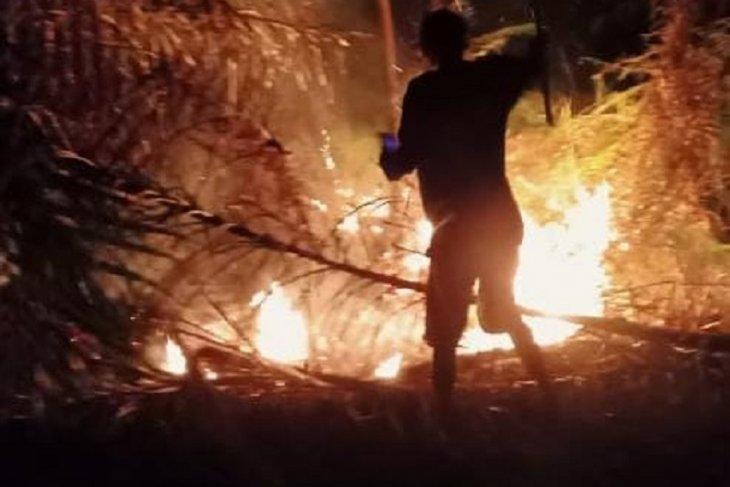 Masyarakat Mukomuko antisipasi kebakaran lahan gambut