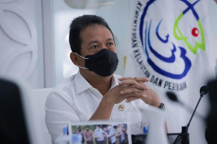 KKP kembangkan perikanan budidaya di Maluku dukung LIN