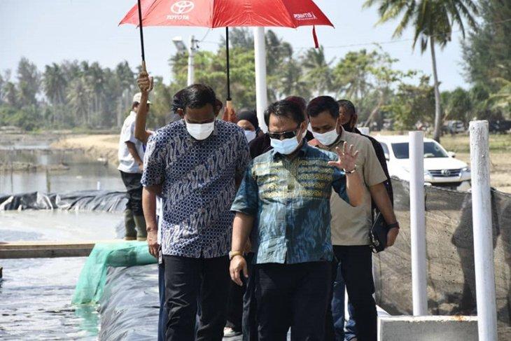 KKP survei lokasi pengembangan budi daya udang di Aceh Timur