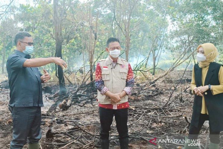 Edi Kamtono diminta investigasi lokasi lahan terbakar