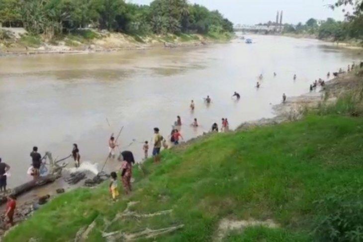 Warga pinggiran sungai Wampu Stabat ketiban rezeki ikan mabuk