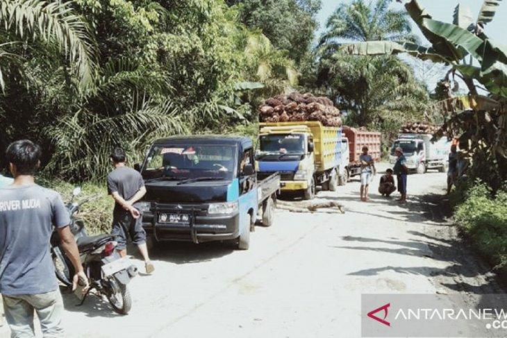 Sejumlah warga Mukomuko blokir jalan pabrik sawit