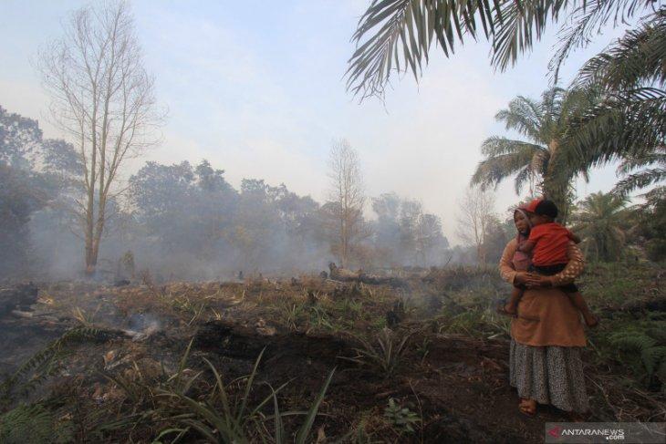 BMKG reports 18 hotspots in Bengkalis District