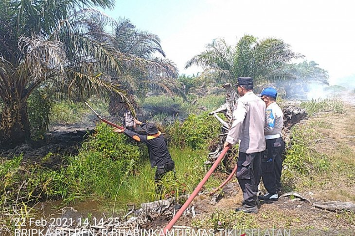 29,5 hektare lahan kebakaran, kerugian capai ratusan juta