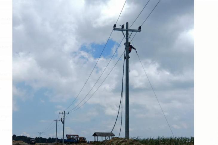 PLN pastikan pasokan listrik Food Estate di Sumut Terpenuhi