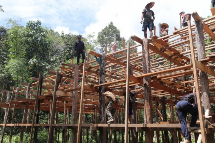 Dayak Iban Sungai Utik perbatasan RI-Malaysia bangun rumah budaya