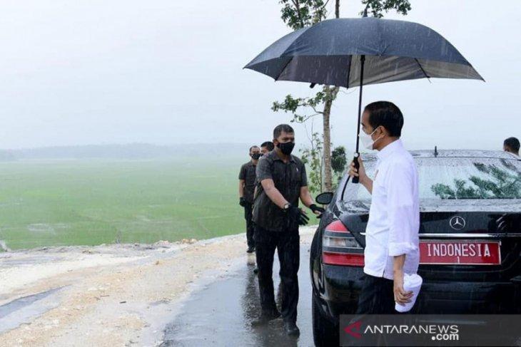 Jokowi dan hujan berkah untuk ekonomi SumbaTengah