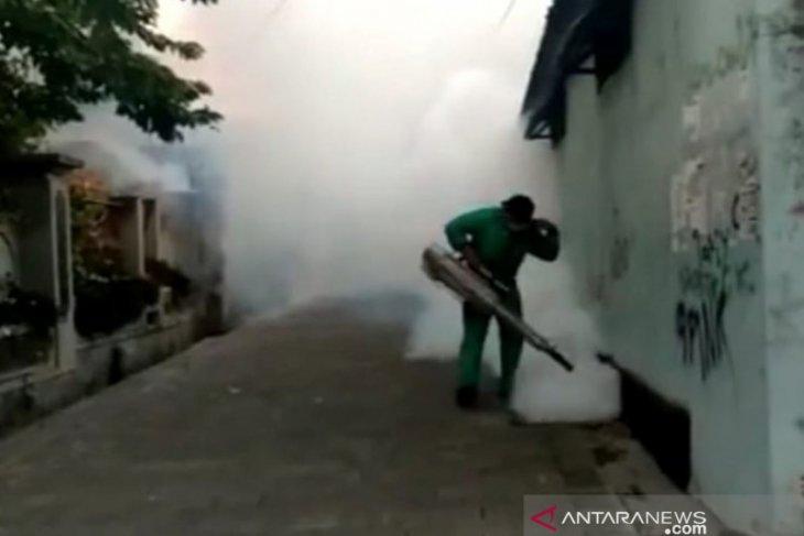 Musim hujan, Diskes Denpasar lakukan penyemprotan serentak antisipasi DBD
