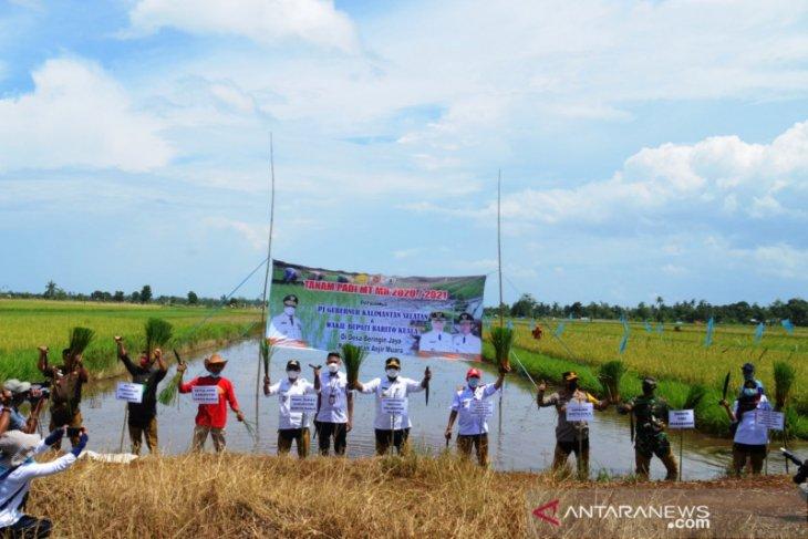 Penjabat Gubernur Kalsel senang hasil produksi padi di Kalsel
