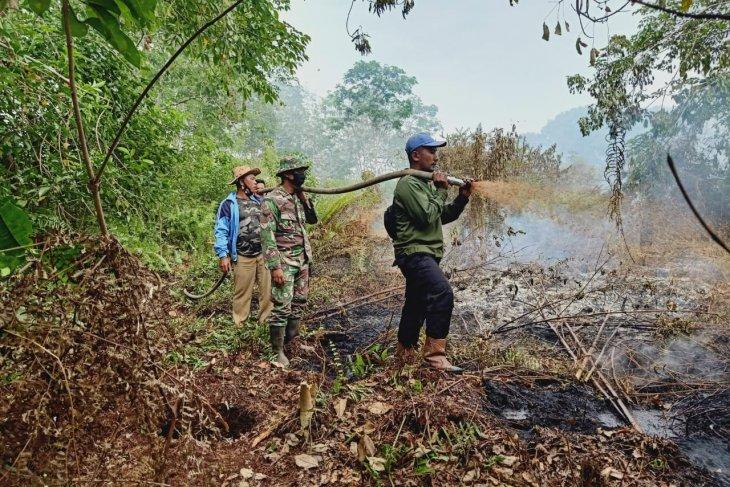Di Riau, luas lahan yang terbakar capai 248 hektare
