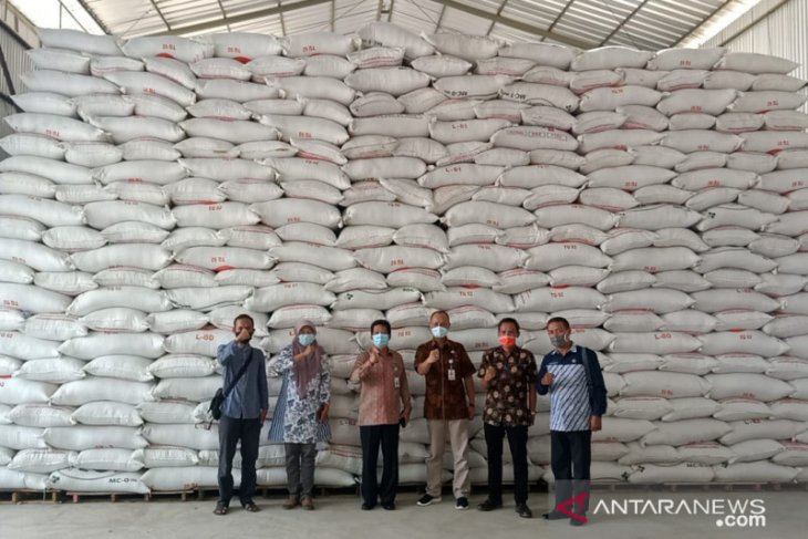 Awal 2021 cadangan pangan Kabupaten Serang  aman