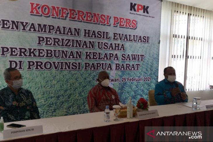 Papua Barat evaluasi izin perkebunan kelapa sawit