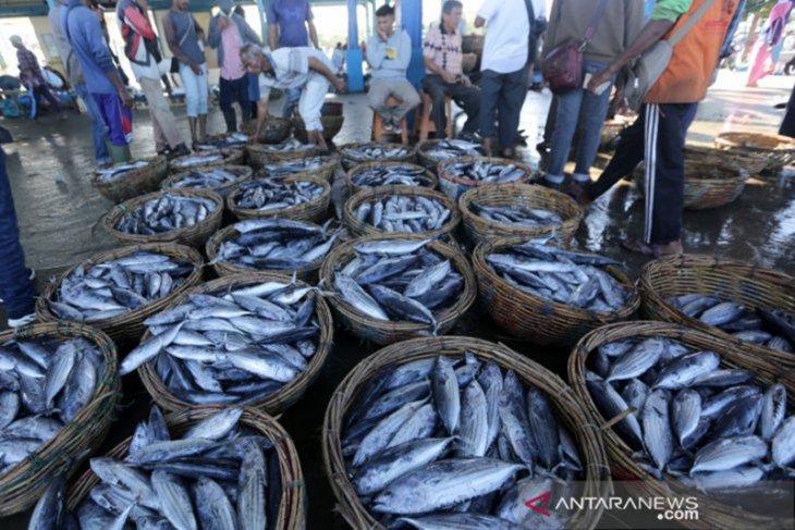 KKP ingin semua tangkapan ikan nelayan ditelusuri