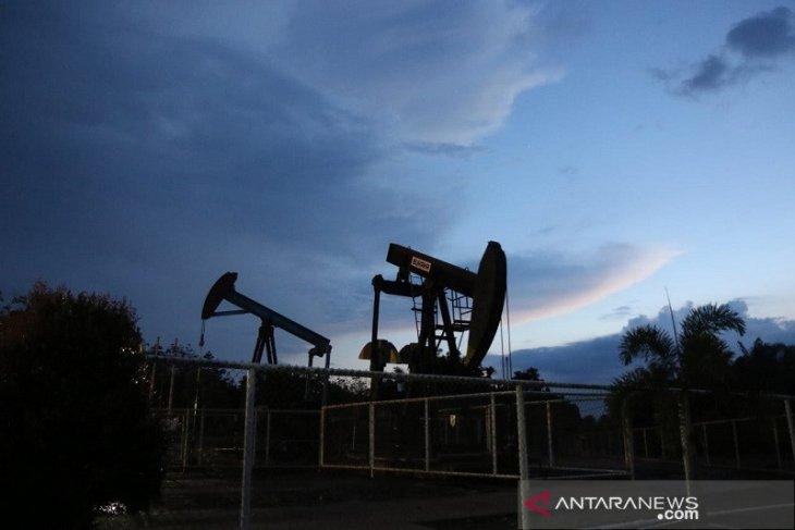 Menurunnya harga minyak dunia jadi tantangan Pertamina EP Jambi