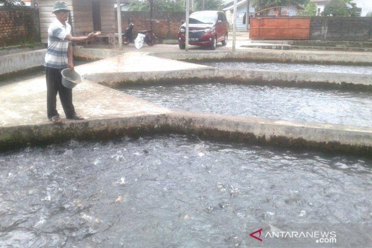 Distanak Rejang Lebong siapkan bantuan perikanan senilai Rp200 juta